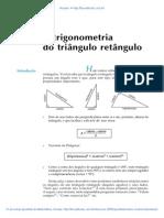 Aula 40 - A trigonometria do triângulo retângulo.pdf