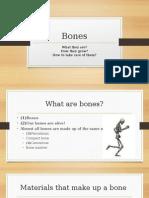 skeletal system day 1