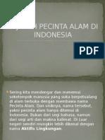 Sejarah Pecinta Alam Di Indonesia