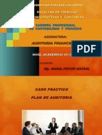 6. Casuistica-plan de Auditoria