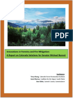 Innovations in Forestry and Fire Mitigation
