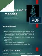 Análisis de La Marcha Capredena