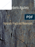 Aguilera, A. - Naturally Fractured Reservoirs (2nd Edition)
