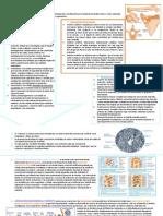 FUNCIO_N Y METABOLISMO DEL HUESO.pdf