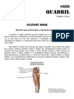 020 - Anatomy Book - Músculos Do Quadril