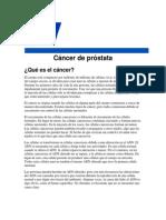 cancer de prostata vision general