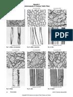 Microfotografias de fibras.pdf