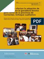 Causas Afectan Adopción Tecnología Ganadería Bovina Carne Provincia Corrientes