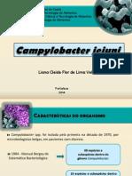 Campylobacter Jejuni
