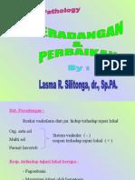 Kuliah3_Peradang