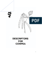 desckriptor cowpea