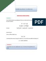 derivada direccional.pdf