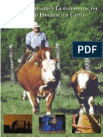 Guidelines for the Care dsdkskdskdnsksdnwkneksakdskanaknsand Handling of Cattle