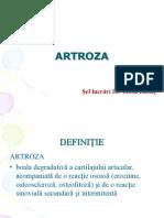 Art Roza