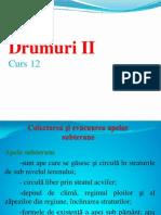 Drumuri II- Curs 12