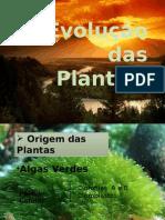 Evoluo Das Plantas