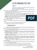 Subiecte Tic Proiecte Access