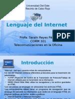 Lenguaje Del Internet