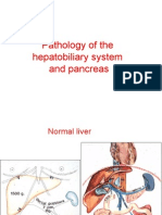 Pathology of the Liver and Pancreas Course R