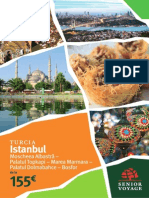 SV Istanbul 2014.pdf