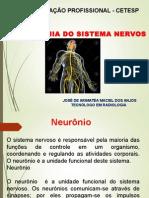 Aula Sistema Nervoso AULA 10.ppt