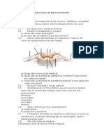 Exercícios de Neuroanatomia