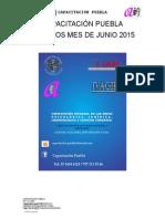 Temarios Diplomados Junio 2015