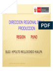 7 REGION PUNO Produccion de Trucha
