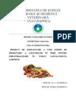 proiect legume.pdf