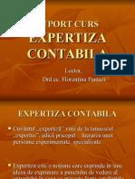 Expertiza contabila.ppt