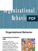 What is Organisational Behaviour