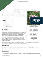 Oleandro – Wikipédia, A Enciclopédia Livre