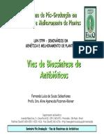 FLSSebastianes 200801 Seminario[1]