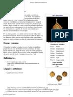 Buchinha – Wikipédia, A Enciclopédia Livre