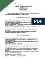 Curriculum Adaptat Matematica Cls a a Viia