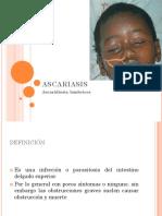Ascaridiosis, Lombrices