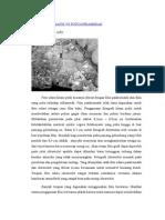 Foto Pankromatik vs Foto Inframerah