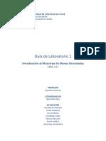Guía Laboratorio 1 Procesos Mineralúrgicos 1 2015