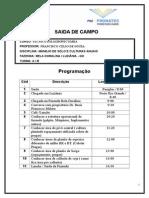 Saida de Campo