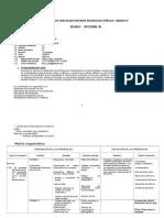Opcional III Silabo Inicial III 2011 i