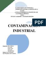 Contaminacion industrial(imprimir).docx