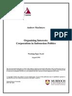 working paper andrew macintyre.pdf