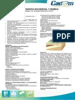 Estratigrafía Secuencial y Sísmica