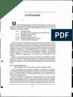 Evaluarea multiaxiala