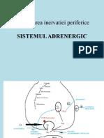 Curs Adrenergic Oana