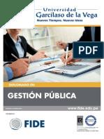 100_uigv-v-publica-21feb.pdf