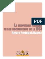 Propiedad privada en la DSI