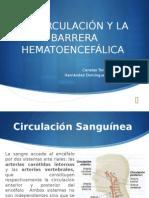 La Circulación y La Barrera Hematoencefálica