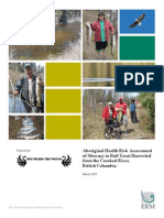 Aboriginal Health Risk Assessment