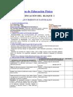Planificación de Educación Física Julio.docx